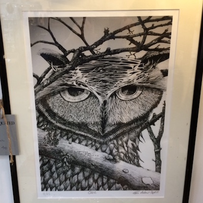 Charcoal Sketch of an Owl