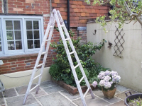 original painted apple ladder