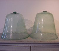 Pair of Glass Cloches