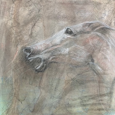 Warhorse in Charcoal